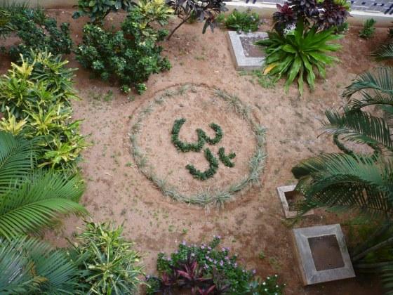 Garden in the ladies building N8...