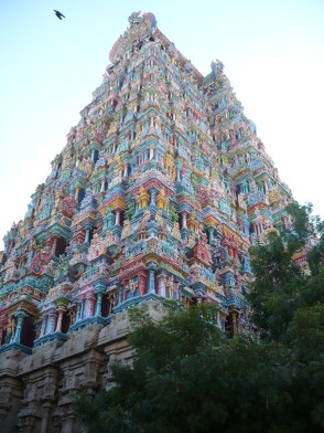 India 2011-2012 274 - Copy
