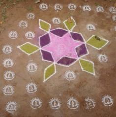 India 2011-2012 602