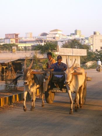 India 2006 7 003