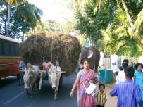 India 2006 7 116