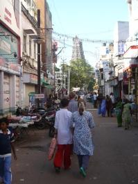 India 2011-2012 251